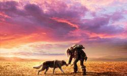 电影《阿尔法:狼伴归途》发人狼盟约海报预告