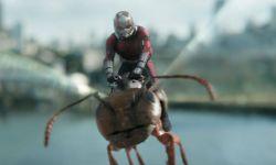 《蚁人2》幕后制作