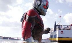 《蚁人2:黄蜂女现身》将于8月24日上映 动作场面脑洞大开
