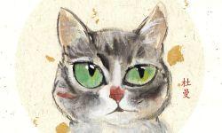 土耳其纪录片《爱猫之城》海报曝光 定档9.22