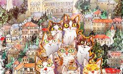 《爱猫之城》发宣传曲MV 展伊斯坦布尔温情风光