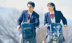 《旅猫日记》发布新剧照 福士苍汰出演高中生