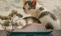 《爱猫之城》中国风海报曝光 开启复古风的吸猫之旅