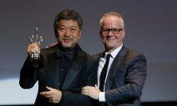 是枝裕和又拿奖了!西班牙国际电影节荣获终身成就奖