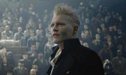 德普确认出演《神奇动物3》 透露续集有望明年中旬开机