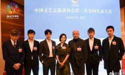 众星出席文艺志愿者代表大会 徐峥佟丽娅张杰等亮相