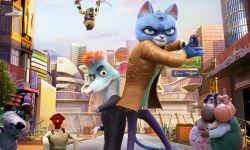 动画《动物特工局》定档12.21 猫鼠搭档开启冒险之旅