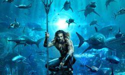 狂欢!11月好莱坞进口片扎堆上映 《毒液》《神奇动物2》《海王》接踵而来
