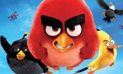 《愤怒的小鸟2》北美提档 避免与多部同档影片竞争