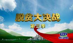 """""""小李子""""挑起大产业——河南卫视《脱贫大决战》第三季今晚开播"""