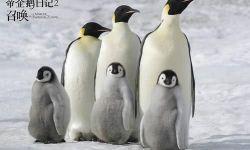 《帝企鹅日记》遭遇了滑铁卢 动物纪录片跌入谷底