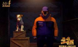 《嘻哈英熊》温情上映,德丰利达关注儿童正能量再获好评