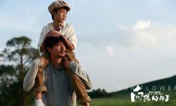 《向阳的日子》口碑不俗 正式启动全国百场联动放映