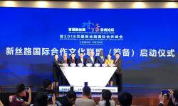 华谊兄弟王中磊受邀出席首届新丝路对话总统论坛