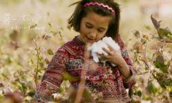 东京国际电影节入围影片《第一次的离别》首曝先导预告片 子爱之情催人泪下