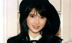蓝洁瑛:香港80年代女星的样子你全有!