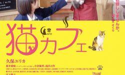 电影《猫咪咖啡厅》预告公开 温暖讲述人与猫咪的故事