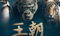 BBC腾讯视频合作纪录片《王朝》定档11.12