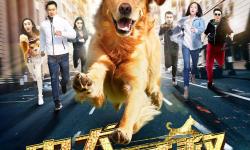 《忠犬大营救》曝终极预告 铲屎官与忠犬互救感人至深