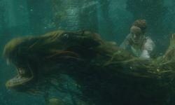 《神奇动物2》曝水下坐骑片段 马形水怪酷到没朋友