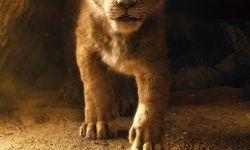 真人版《狮子王》首发预告片,刚出生的小辛巴把人萌化