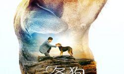 《一条狗的使命》姊妹篇定档1月18日 讲述狗狗寻主故事