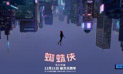 《蜘蛛侠:平行宇宙》曝最美信仰之跃片段