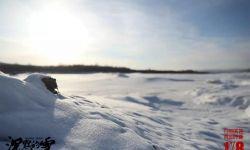 电影《沉默的雪》今日全国公映 引爆根河市