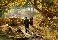 《野梨树》:土耳其电影大师锡兰的爱与哀愁