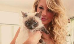 爱猫少女霉霉发自拍确认进组电影《猫》 配文可爱