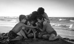 摄影家协会颁奖 黑白片《冷战》击败《罗马》夺魁