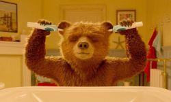 英国《帕丁顿熊》将拍动画剧集