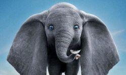 迪士尼经典接连上演 《小飞象》真人版内地定档