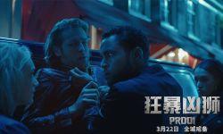 电影《狂暴凶狮》曝最新剧照 人兽飙战上演猎杀危情