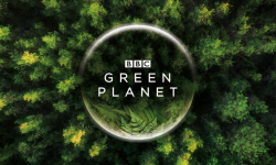 BBC官宣五大巨制 自然历史类头部内容排期至2022年