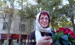电影《出租车》女演员被判38年监禁148次鞭刑