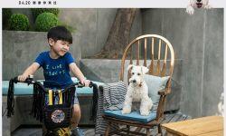 电影《狗眼看人心》曝创意对比海报 安吉深情告白爱犬