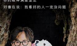 电影《狗眼看人心》曝树洞画 揭秘养狗人士的7个秘密