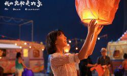 电影《我的宠物是大象》今日上映 尤靖茹恋上刘青云