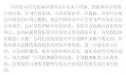 """""""视觉中国""""引众怒:审核出问题不是借口要严惩"""