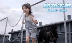 电影《动物出击》呼应世界儿童日主题 看别样组合明日萌冠银幕