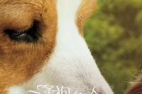 大发奔驰宝马—奔驰宝马棋牌《一条狗的使命2》曝推广曲MV 当你孤单,你会想起谁