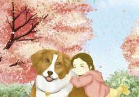 """电影《一条狗的使命2》热映 """"陪伴版""""海报引关注"""