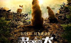 电影《忠犬流浪记》发布定档预告 9月6日温情上映