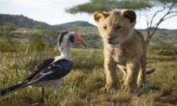 电影《狮子王》北美预售开启创纪录 迪士尼真人版最佳