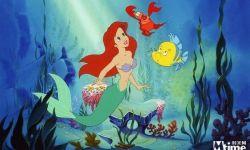迪士尼真人版《小美人鱼》确定主角!