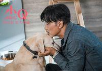 电影《小Q》因任达华受伤改档,推迟至9月20日上映