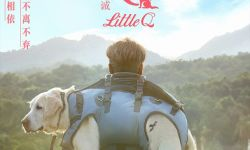 电影《小Q》全国大范围点映 最暖心的陪伴告白最爱的人