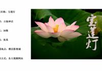 横店著名导演张禹执导 小戏骨版《宝莲灯》演员海选进行中!