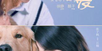 一支vlog揭晓演员阵容,徐峥新片《宠爱》定档12月31日